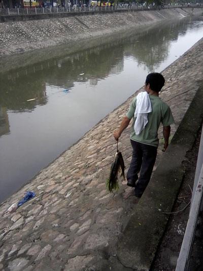 Vợt cá trên sông Kim Ngưu - 5