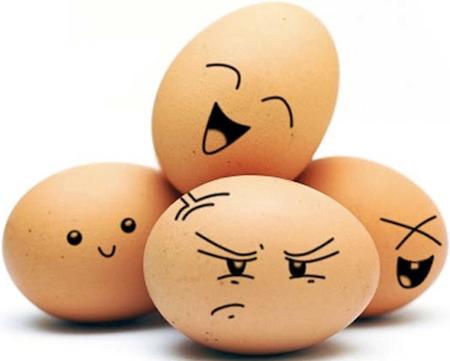Đố vui: Quả trứng, con gà - 1