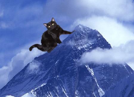 Đố vui: Đỉnh Everest - 1