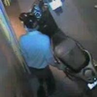 Cận cảnh tên trộm xe SH trong 3 giây