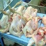 Thị trường - Tiêu dùng - Gà siêu rẻ 30 nghìn/kg là gà Trung Quốc?
