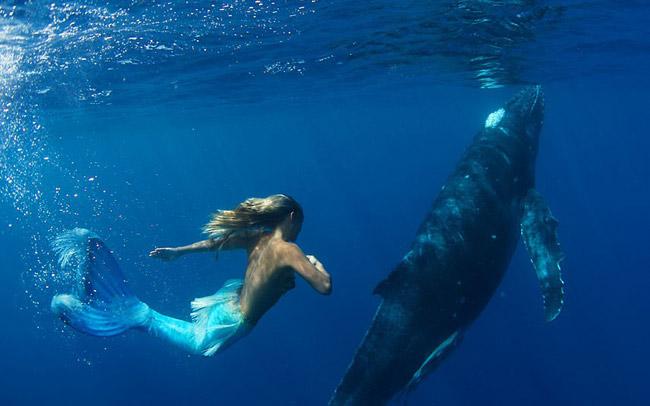 Mục đích của Hannah là tuyên truyền để bảo vệ cá voi, cá heo.