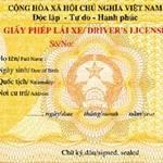 Ô tô - Xe máy - Áp dụng giấy phép lái xe mẫu mới từ 1/7