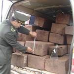 Tin tức trong ngày - Bắt 2 vụ vận chuyển gần 1,4 tấn gỗ sưa