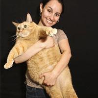 Chú mèo béo nhất thế giới