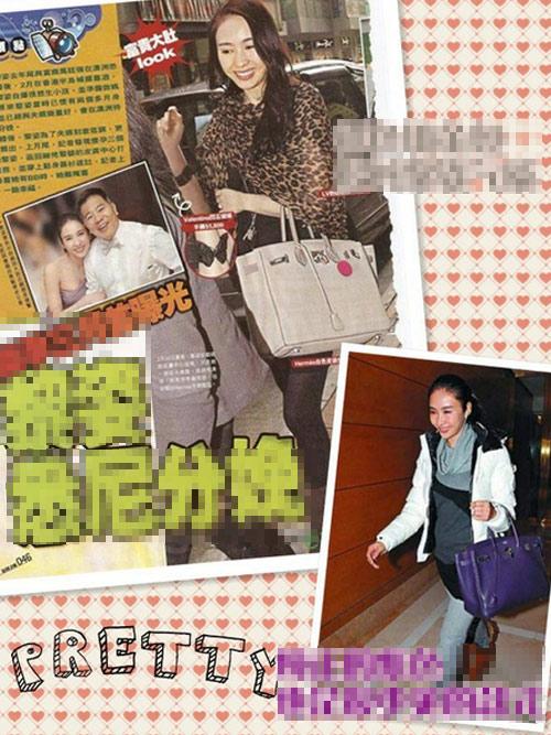"""Bộ sưu tập túi """"khủng"""" của sao Hoa ngữ - 13"""