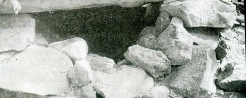 Ba mẹ con sống như thời nguyên thủy - 2