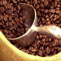 """Giá cà phê """"lội ngược dòng"""" thế giới"""