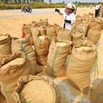"""Thị trường - Tiêu dùng - Chính sách mua gạo """"khó hiểu"""" của TQ"""