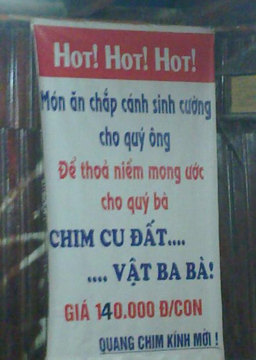 Những ảnh độc đáo chỉ có ở Việt Nam (54) - 4