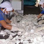 Thị trường - Tiêu dùng - Thương lái Trung Quốc thao túng lúa, dừa khô