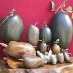 Phi thường - kỳ quặc - Bộ sưu tập thạch quả và sinh vật lạ