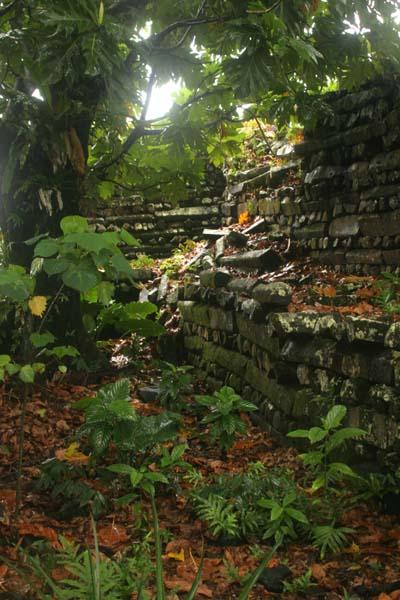Bí ẩn đằng sau thành phố đá cổ Nan Madol - 12
