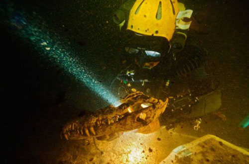 Những hang động kỳ thú dưới đáy biển Bahamas - 2