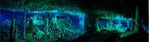 Những hang động kỳ thú dưới đáy biển Bahamas - 12