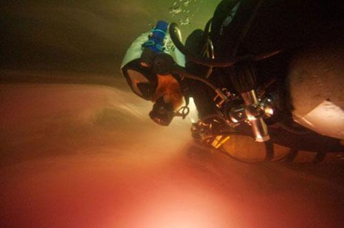 Những hang động kỳ thú dưới đáy biển Bahamas - 8