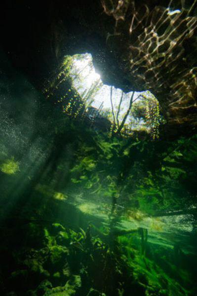 Những hang động kỳ thú dưới đáy biển Bahamas - 20