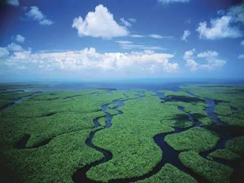 Ngắm 10 khu vườn quốc gia hùng vĩ nhất nước Mỹ - 9