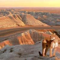 Ngắm 10 khu vườn quốc gia hùng vĩ nhất nước Mỹ