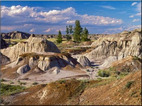 Công viên hóa thạch khủng long lớn nhất Thế giới - 3