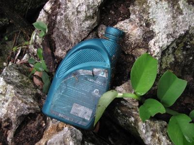 Xem lâm tặc hạ nghiến ở vườn QG Ba Bể - 4
