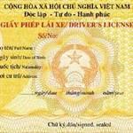 Tin tức trong ngày - TPHCM: Giấy phép lái xe mẫu mới lỗi hẹn