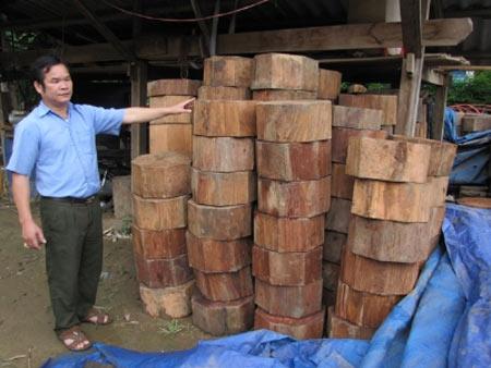 """Chiêu hợp thức hóa gỗ lậu của """"ông trùm"""" - 2"""