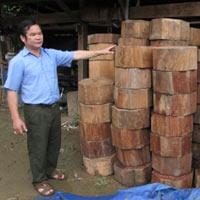 """Chiêu hợp thức hóa gỗ lậu của """"ông trùm"""""""