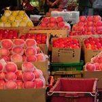 """Thị trường - Tiêu dùng - """"Hô biến"""" táo TQ thành trái cây Úc, Thái Lan..."""