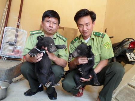 Hãi hùng cảnh người Việt phanh thây khỉ - 12