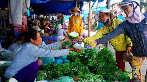 Bí đao khổng lồ ở Việt Nam - 5
