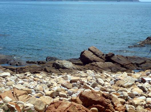 Thanh bình biển quy nhơn - 5