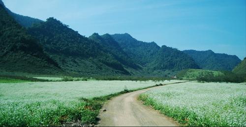 20 khoảnh khắc du lịch đẹp nhất việt nam - 9