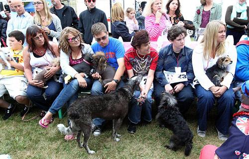 Tưng bừng cuộc thi chú chó xấu nhất thế giới - 14