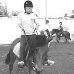 Tin tức trong ngày - Rủ nhau đi học đua ngựa giữa Sài thành