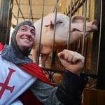 """Bóng đá - Đoán sai, """"lợn tiên tri"""" có nguy cơ bị thịt"""