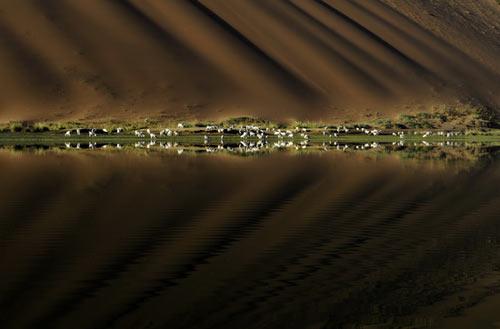 Vẻ đẹp bí ẩn của sa mạc Ba Đan Cát Lâm - 4