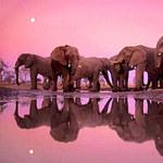 Du lịch - 10 ảnh thiên nhiên đẹp nhất mọi thời đại