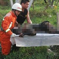 Ghê sợ nạn đào mộ người chết vì sét đánh