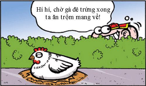 Chuyện con gà triệt sản - 1