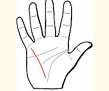 Khám phá những đường chỉ tay đặc biệt - 2