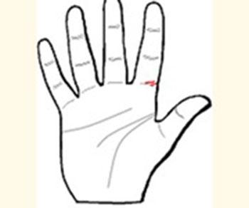 Khám phá những đường chỉ tay đặc biệt - 3