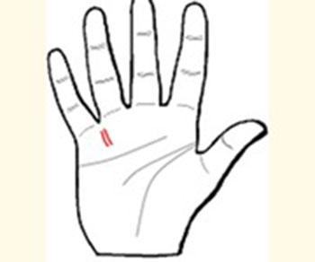 Khám phá những đường chỉ tay đặc biệt - 4