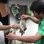 Tin tức trong ngày - Nghệ An: Đồ vật trong nhà tự bốc cháy?