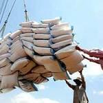 Thị trường - Tiêu dùng - Áp lực giảm giá gạo ngày càng lớn