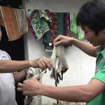 Tin tức trong ngày - Đồ vật tự bốc cháy ở Nghệ An: CA vào cuộc