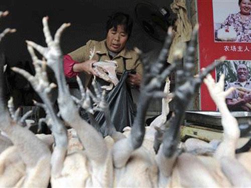 Thông tin mới nhất về cúm chết người H7N9 - 1