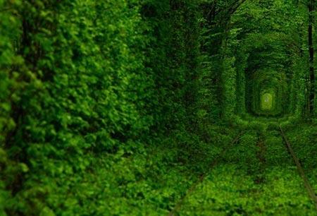 Những con đường tình yêu đẹp ngỡ ngàng trên thế giới - 9