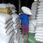 Thị trường - Tiêu dùng - Giá gạo xuất khẩu thấp kỷ lục