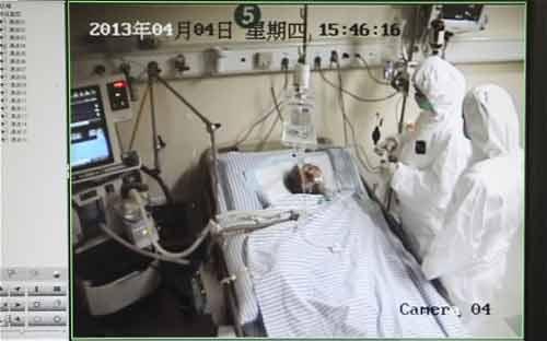 TQ: Đã có 5 người chết vì cúm gia cầm H7N9 - 1